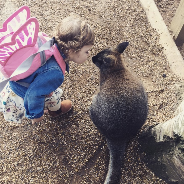 The time Freya kissed a wallaby